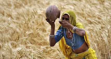 Making strides in women farmers' income in India