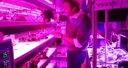 How personal food computers could revolutionize farming