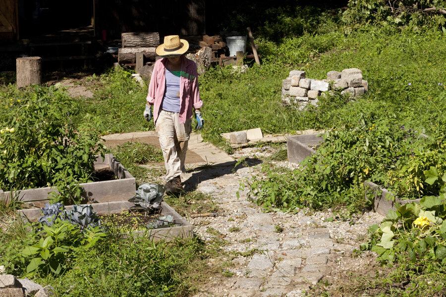 Nine landscaping, gardening skills to pick up to save money