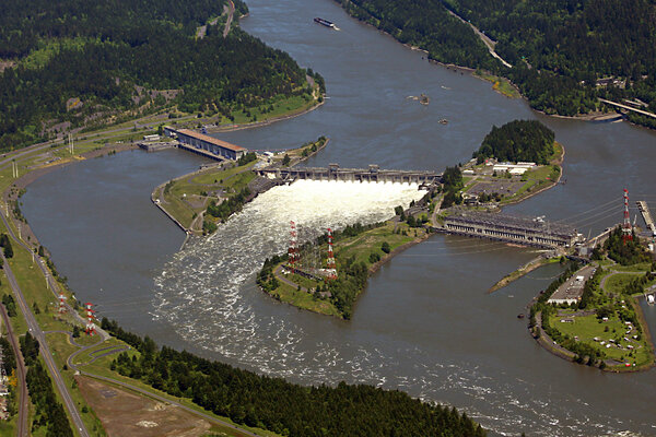 why  700 million to save salmon may not be enough