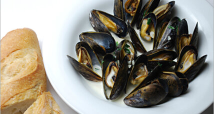 Mussels in tarragon cream sauce