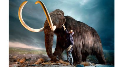 What killed off the woolly mammoth? Climate change