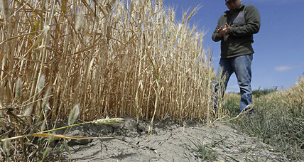Could El Niño end California's drought?