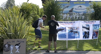 Large crowds protest dolphin captivity in French Riviera