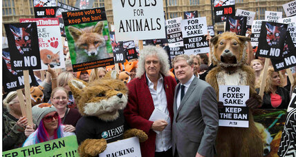 What the UK's foxhunting vote is really about – and it isn't foxes