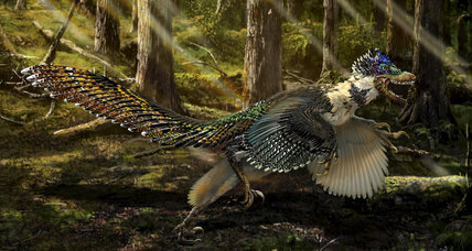 Paleontologists discover 'fluffy feathered poodle from hell'