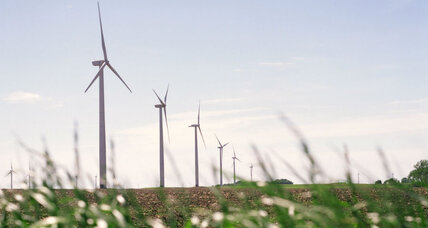 Why is Hewlett Packard harnessing wind power?