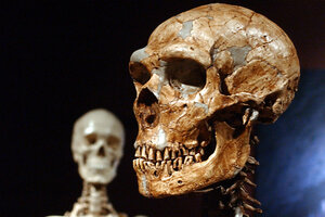 Carbon dating forensic anthropology