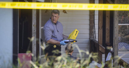 Georgia murder-suicide underscores challenge of domestic violence intervention (+video)