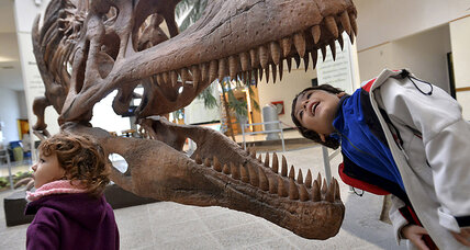 T. rex's nine-inch, serrated teeth: A dentist's dream or nightmare?