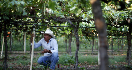 Drought in California: How farmers are coping