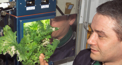ISS astronauts dine on space lettuce. Is this the future of farming?