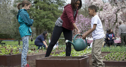 School gardens help fruit, vegetables to flourish in low-income food deserts