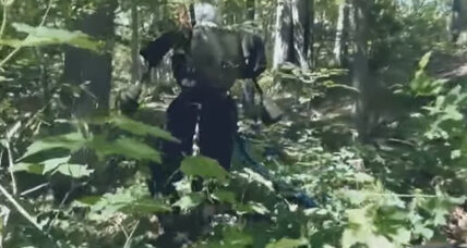 A robot runs through it: Watch Boston Dynamic's Atlas trot through forest (+video)