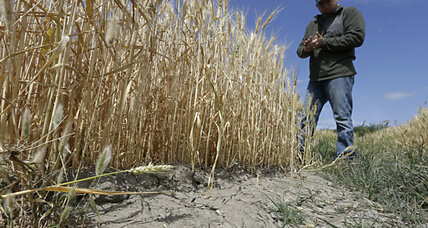 Global warming has made California's drought worse, say scientists