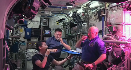 Astronauts sample space lettuce for first time