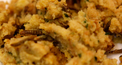 Eating bugs could save the planet. But can we stomach it?
