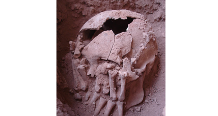 Was this 9,000-year-old American decapitated out of kindness?