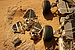 NASA's first Mars lander makes a cameo in 'The Martian'