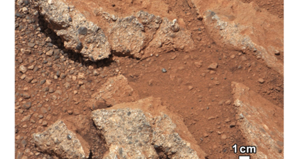 Martian river likely carried pebbles tens of miles: What could it mean?