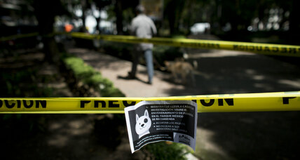 Canine killings rattle heart of Mexico City's doggie culture