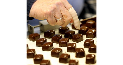 National Chocolate Day: Could climate change hurt supplies?