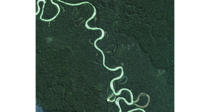 How much did Amazonian natives mess with the rainforest?
