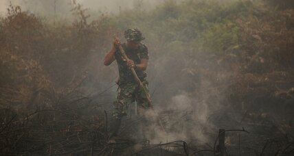 Why isn't more attention being paid to Indonesia's catastrophic wildfires?
