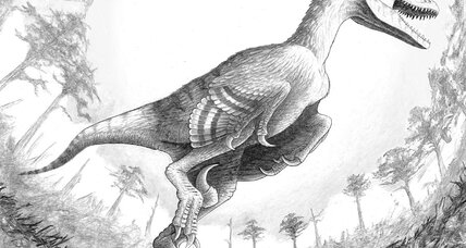 A jumbo raptor once roamed South Dakota, say scientists
