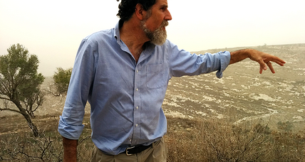 In West Bank, rabbi leads search for peace, one olive harvest at a time