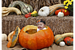 Humans may have saved pumpkins, squash, and gourds from extinction