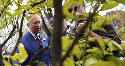 Is climate change to blame for crisis in Syria? Prince Charles says so.