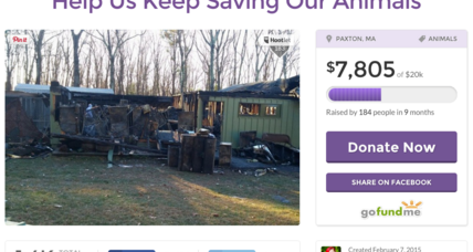 Public rallies behind Massachusetts animal shelter devastated by fire