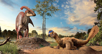 How did dinosaurs build their nests?
