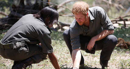 Is Prince Harry making a difference in African conservation? (+video)