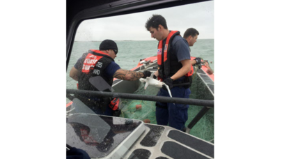 Coast Guard saves 50 sharks from illegal nets in Texas