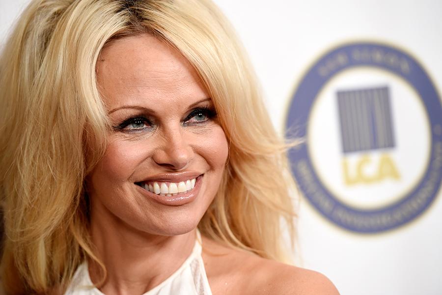 What Is Pamela Anderson Doing Lobbying The Kremlin - Csmonitorcom-4654