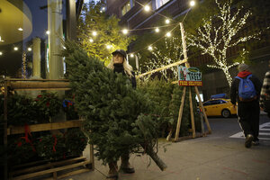Peddlers flock to New York City for Christmas tree season ...