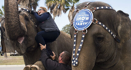 Why Ringling Bros. elephant shows will end early (+video)