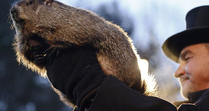Punxsutawney Phil forecasts early spring: What's his track record? (+video)