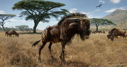 Weird convergence: Extinct wildebeest cousin and dinosaur shared noses