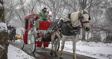 NY mayor vs. horse-drawn carriages: Who won this round?