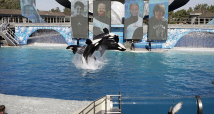 SeaWorld admits employees posed as activists, citing security concerns