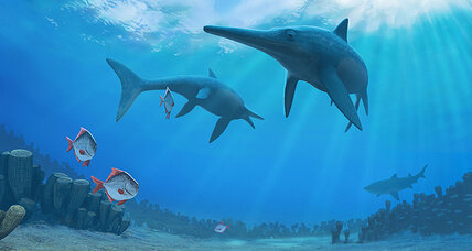 'Sea dragon' reveals glimpse of fleeting prehistoric world