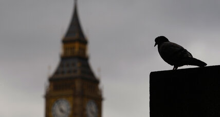 How pigeons with tiny backpacks can help London curb pollution (+video)