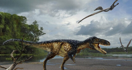 Scientists genetically alter chick DNA to grow dinosaur limbs