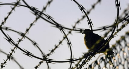 Green Guantánamo: From detention center to peace park?