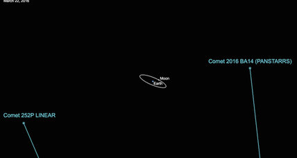 Twin comets to careen past Earth