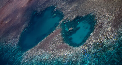 Great Barrier Reef bleaching could be final 'wake-up call' for climate action