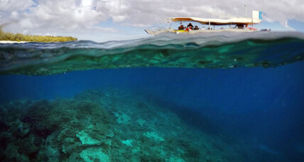 Can we save the Great Barrier Reef?